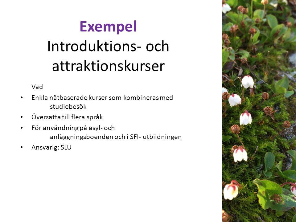 Exempel Introduktions- och attraktionskurser Vad Enkla nätbaserade kurser som kombineras med studiebesök Översatta till flera språk För användning på asyl- och anläggningsboenden och i SFI- utbildningen Ansvarig: SLU