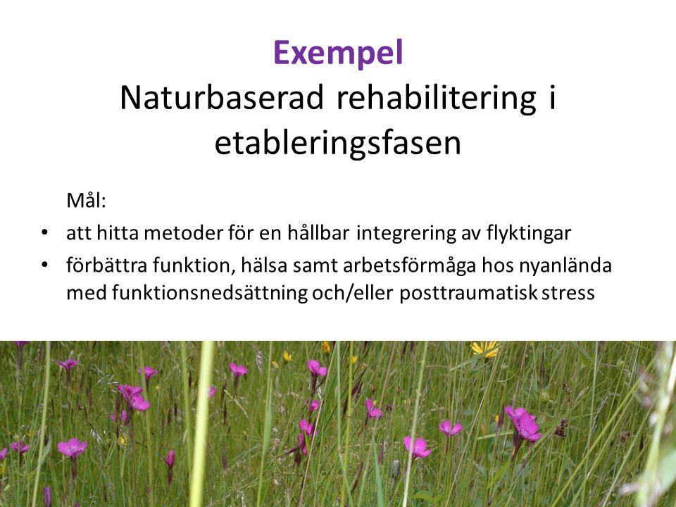 Exempel Naturbaserad rehabilitering i etableringsfasen Mål: att hitta metoder för en hållbar integrering av flyktingar förbättra funktion, hälsa samt arbetsförmåga hos nyanlända med funktionsnedsättning och/eller posttraumatisk stress