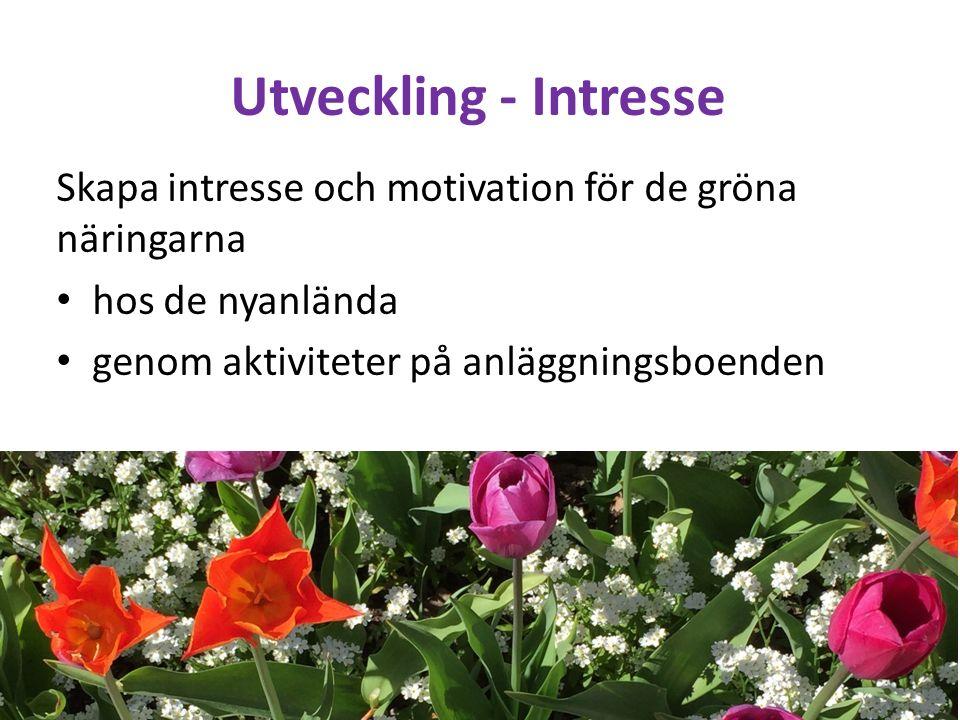 Utveckling - Intresse Skapa intresse och motivation för de gröna näringarna hos de nyanlända genom aktiviteter på anläggningsboenden