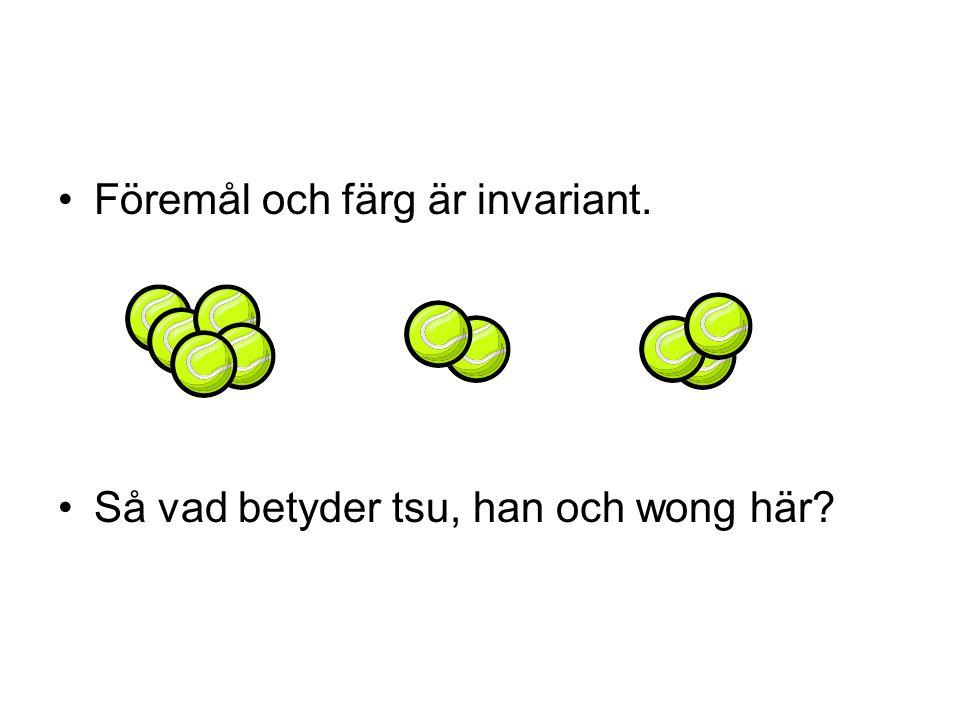 Föremål och färg är invariant. Så vad betyder tsu, han och wong här?