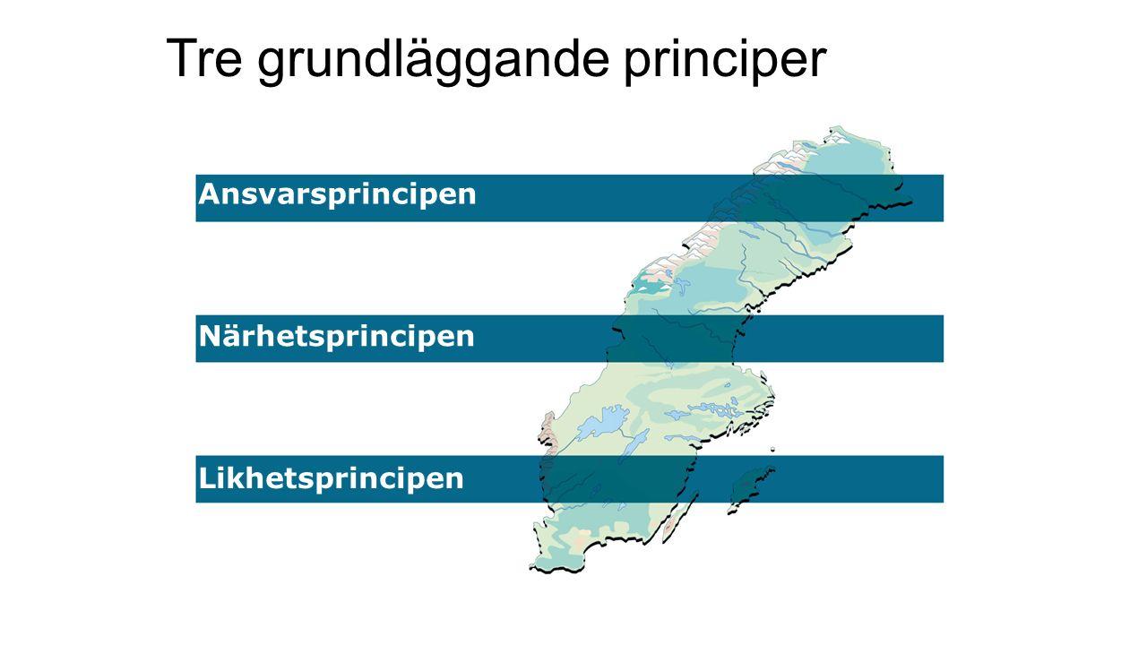 Tre grundläggande principer Ansvarsprincipen Närhetsprincipen Likhetsprincipen