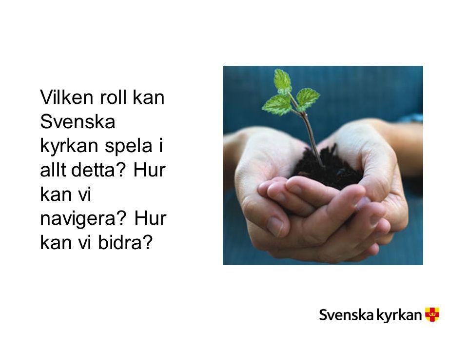 Vilken roll kan Svenska kyrkan spela i allt detta Hur kan vi navigera Hur kan vi bidra