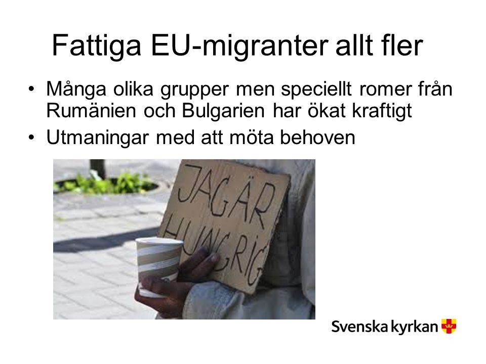 Fattiga EU-migranter allt fler Många olika grupper men speciellt romer från Rumänien och Bulgarien har ökat kraftigt Utmaningar med att möta behoven