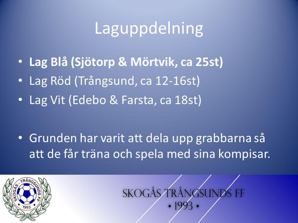 Laguppdelning Lag Blå (Sjötorp & Mörtvik, ca 25st) Lag Röd (Trångsund, ca 12-16st) Lag Vit (Edebo & Farsta, ca 18st) Grunden har varit att dela upp grabbarna så att de får träna och spela med sina kompisar.