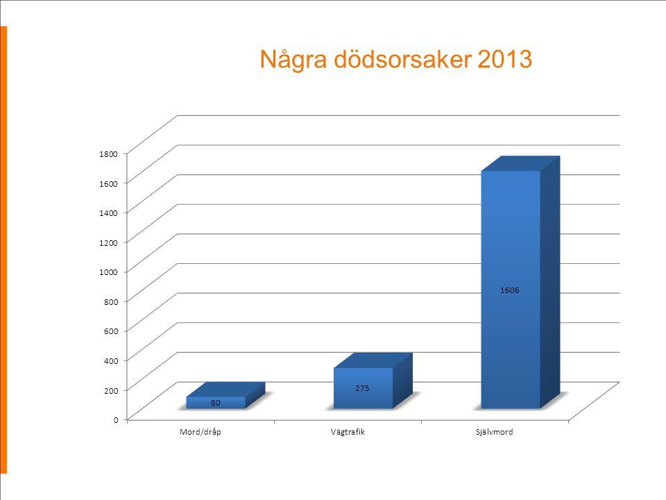 Några dödsorsaker 2013