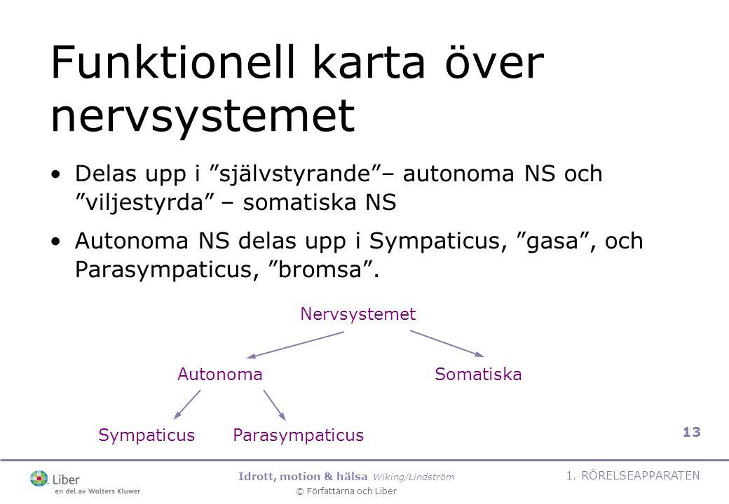 """Idrott, motion & hälsa Wiking/Lindström © Författarna och Liber 1. RÖRELSEAPPARATEN 13 Funktionell karta över nervsystemet Delas upp i """"självstyrande"""""""