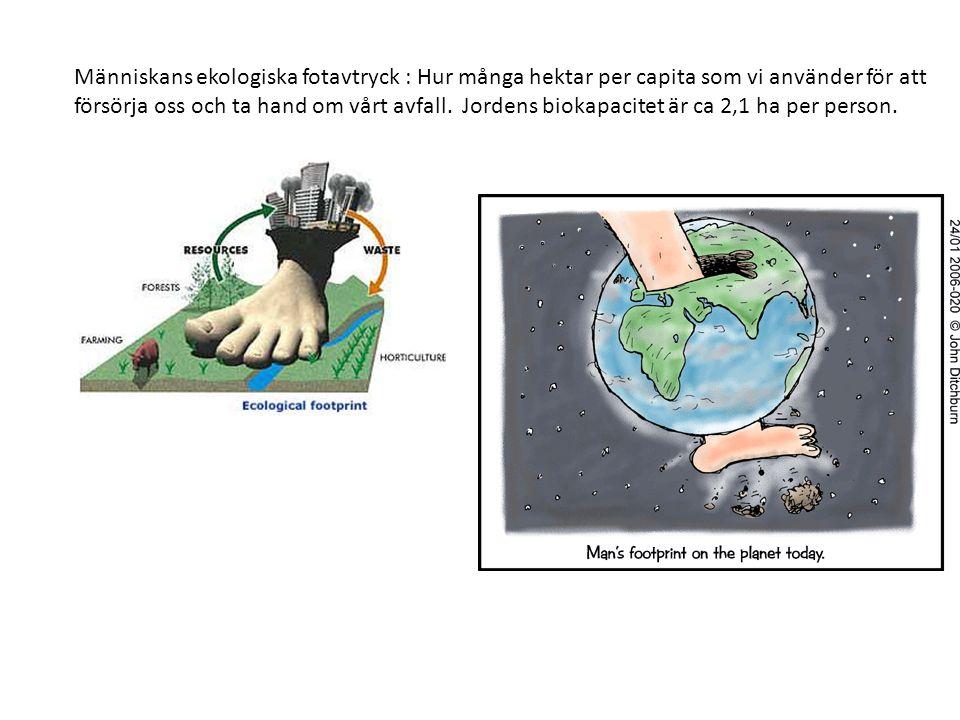Människans ekologiska fotavtryck : Hur många hektar per capita som vi använder för att försörja oss och ta hand om vårt avfall.