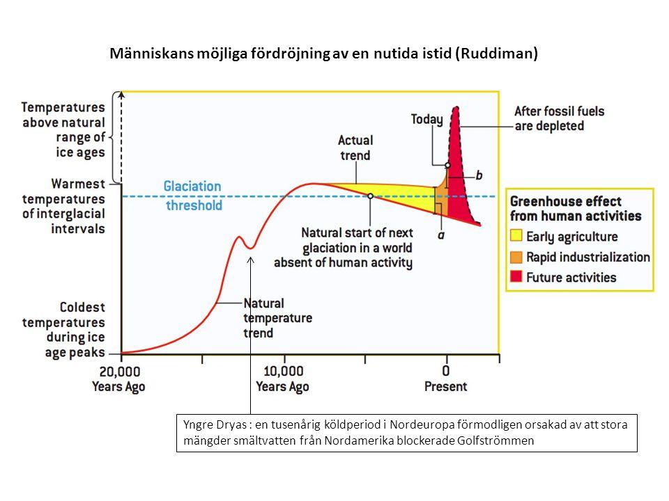Människans möjliga fördröjning av en nutida istid (Ruddiman) Yngre Dryas : en tusenårig köldperiod i Nordeuropa förmodligen orsakad av att stora mängder smältvatten från Nordamerika blockerade Golfströmmen
