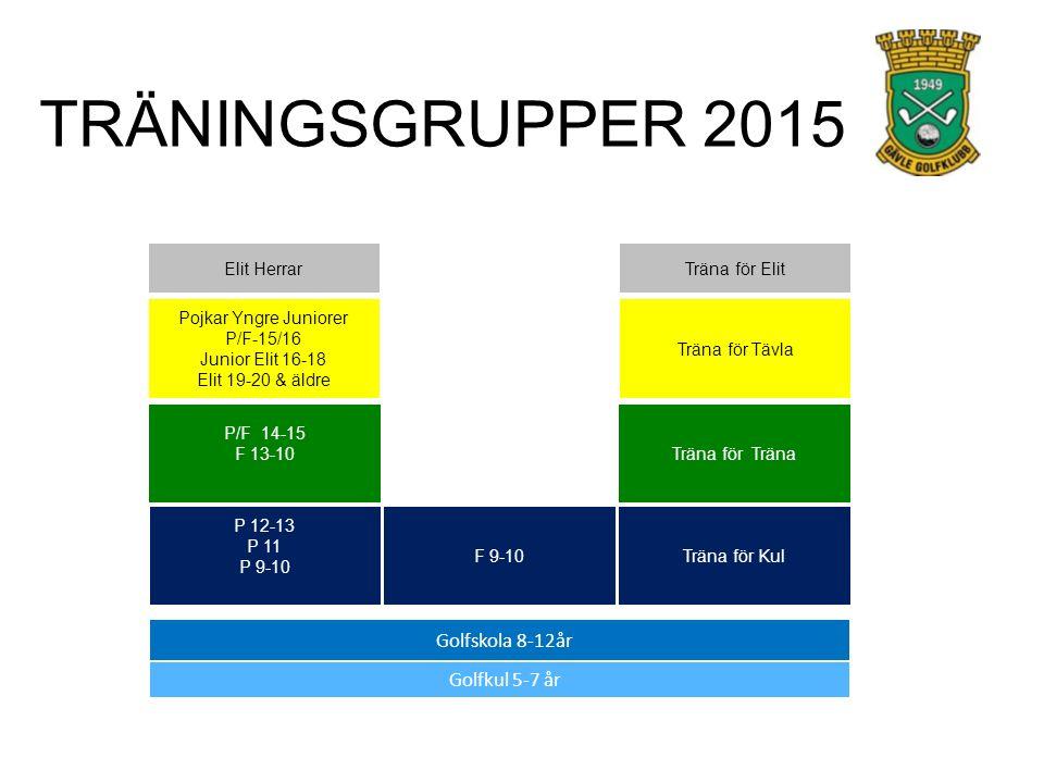 Golfkul 5-7 år Golfskola 8-12år P 12-13 P 11 P 9-10 P/F 14-15 F 13-10 Pojkar Yngre Juniorer P/F-15/16 Junior Elit 16-18 Elit 19-20 & äldre F 9-10 Trän