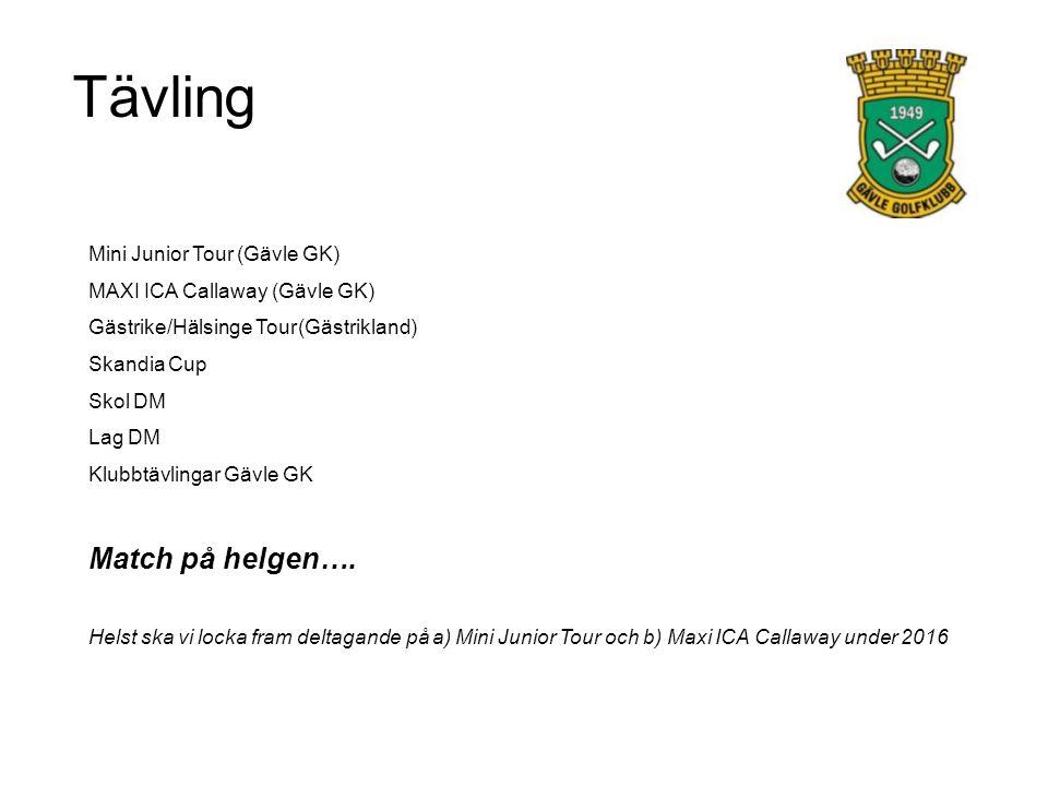 Datum (exempel från 2015) 31/5 skall alla lag hjälpas åt att starta upp Mini Junior Tour 15/8 ansvarar P02-03 för Mini Junior tour deltävling 5 13/9 skall alla lag hjälpas åt att avsluta Mini Junior Tour