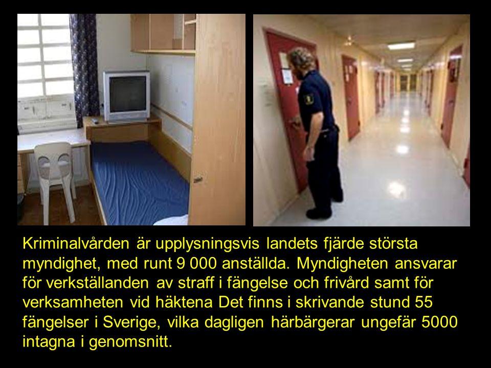 Kriminalvården är upplysningsvis landets fjärde största myndighet, med runt 9 000 anställda.