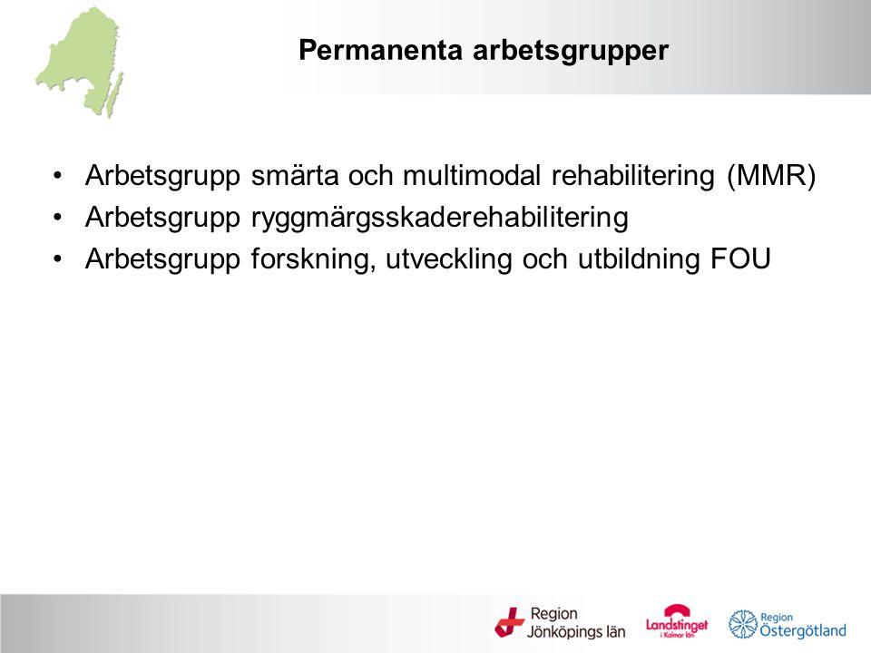 Permanenta arbetsgrupper Arbetsgrupp smärta och multimodal rehabilitering (MMR) Arbetsgrupp ryggmärgsskaderehabilitering Arbetsgrupp forskning, utveckling och utbildning FOU