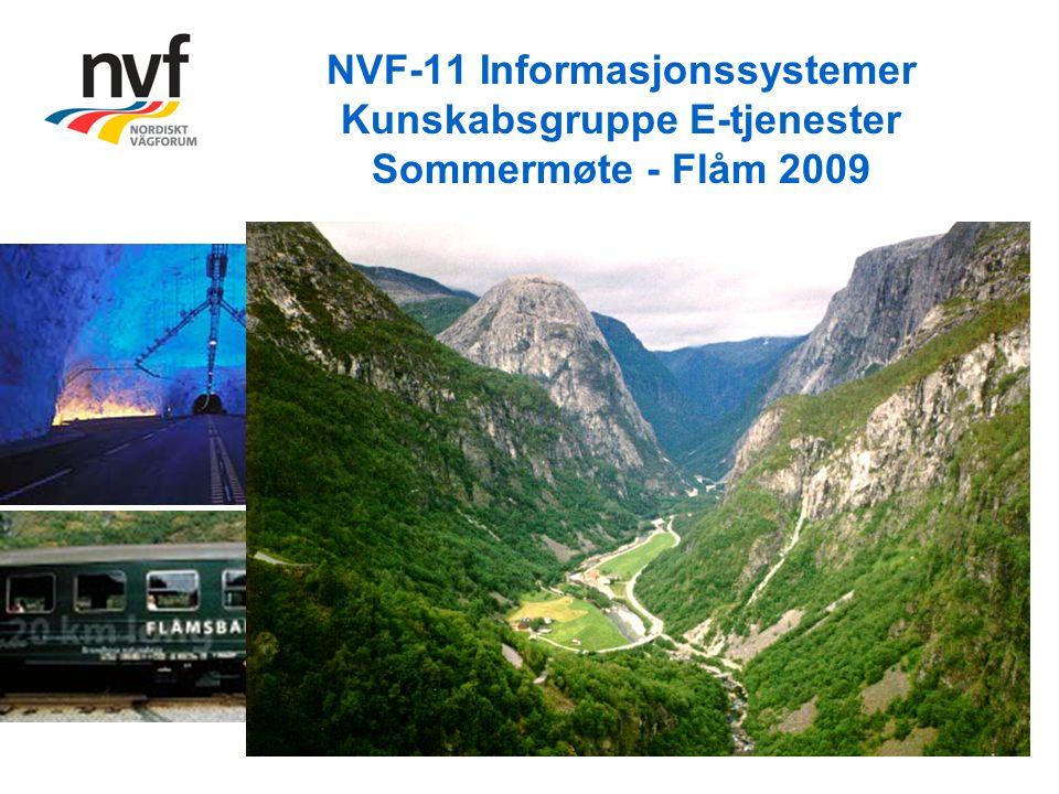 NVF-11 Informasjonssystemer Kunskabsgruppe E-tjenester Sommermøte - Flåm 2009