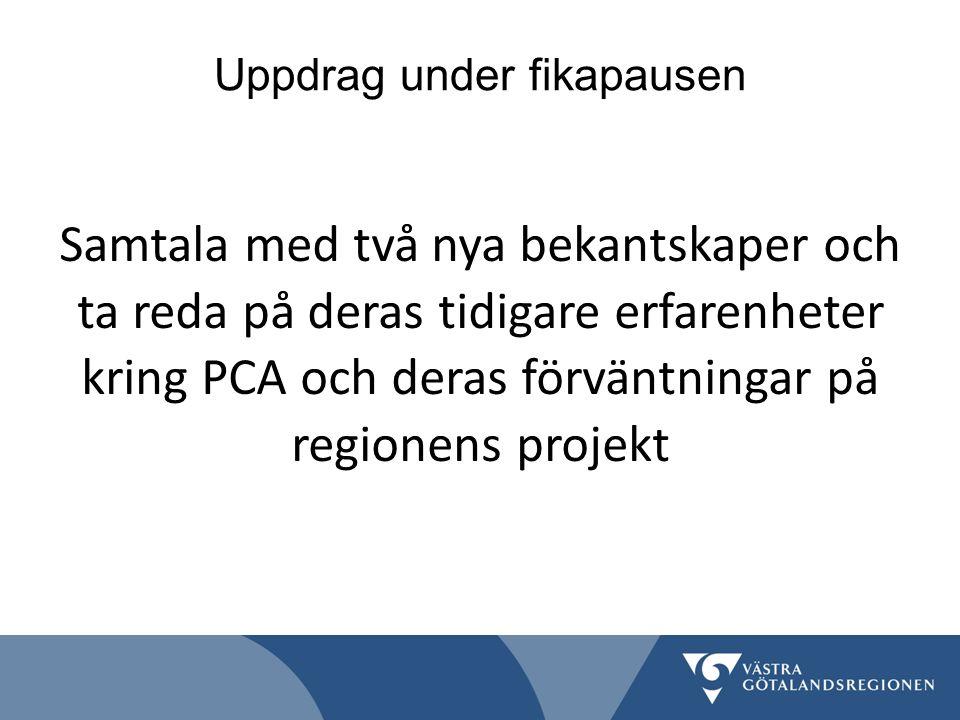 Uppdrag under fikapausen Samtala med två nya bekantskaper och ta reda på deras tidigare erfarenheter kring PCA och deras förväntningar på regionens projekt