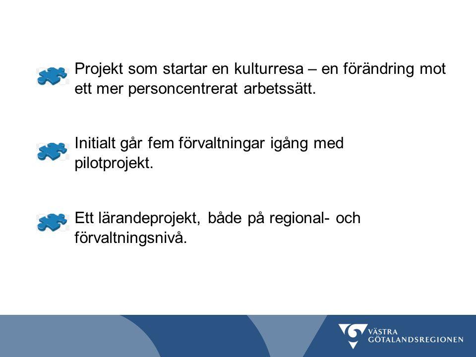 Sammanfattning Beslut HSS 28/1 budget och inriktning klar 1 februari startade 6-7 förändringsledare utsedda av sina förvaltningar (AL, NU, Kungälv, SkaS, Närhälsan, KS,SäS) Grundprogram och storworkshop.