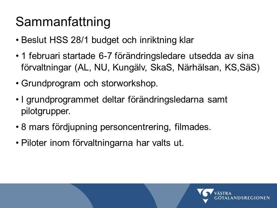 Vad händer på Alingsås lasarett.Informations- och etableringsarbete.