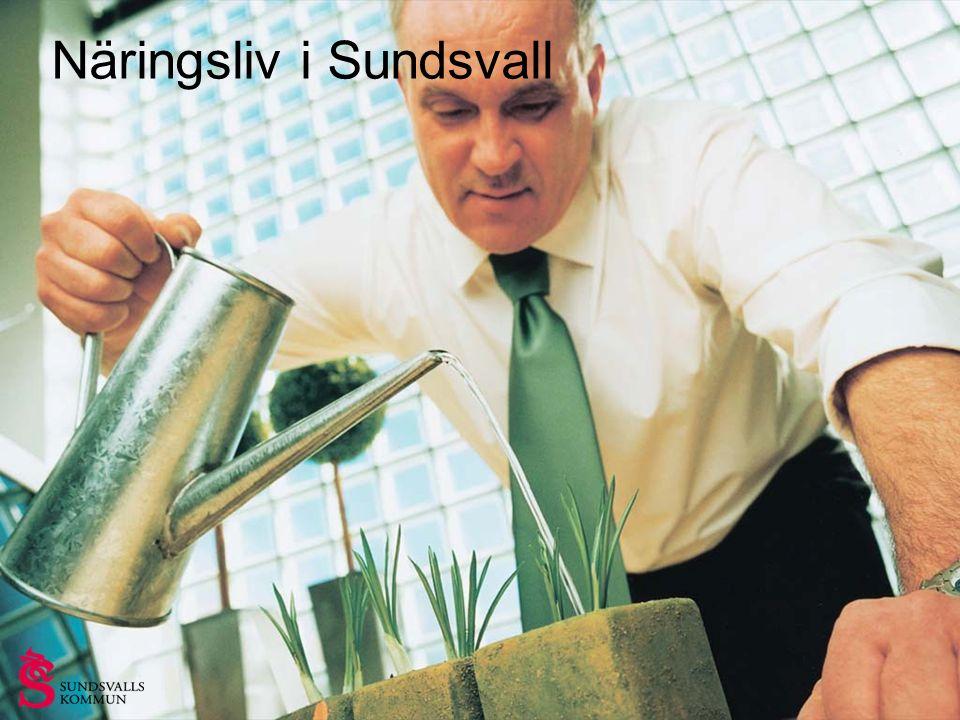 Strategiskt läge vid kusten, mitt i Sverige Över 95 000 invånare i Sundsvall 200 000 invånare i Sundsvallsregionen Sundsvallsregionen är norra Sveriges största arbetsmarknad Areal Sundsvall: 3 206 km 2