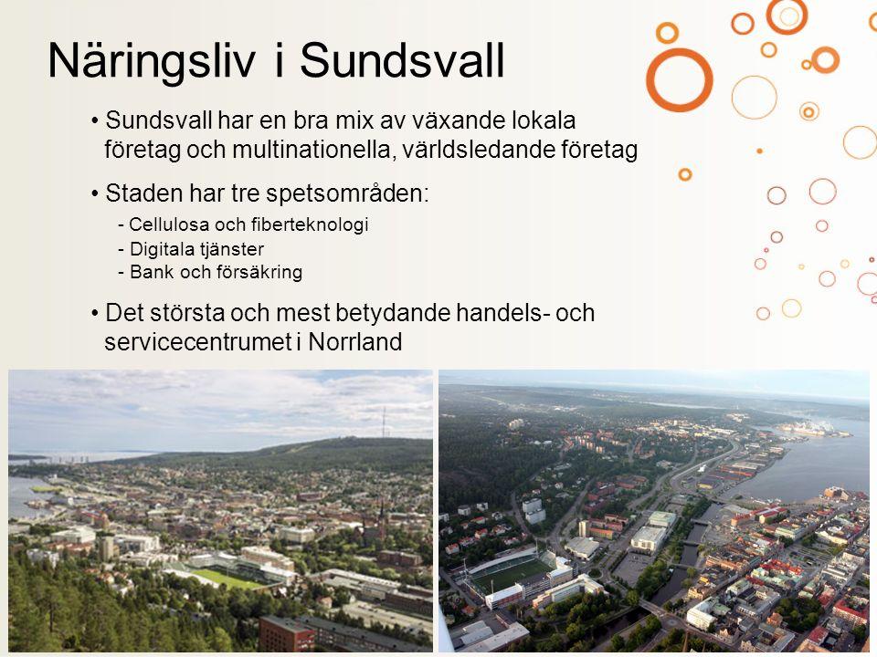 Arbetsmarknaden spänner över många branscher Har drygt 8 000 registrerade företag Dominerande branschen är parti- och detaljhandeln Därefter följer skogsbruk, jordbruk och fiske Väl utvecklad infrastruktur förstärker stadens strategiska placering Näringsliv i Sundsvall