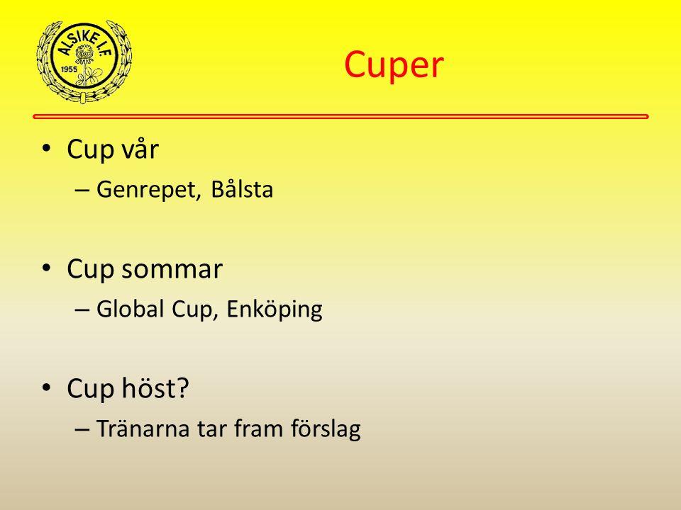 Cuper Cup vår – Genrepet, Bålsta Cup sommar – Global Cup, Enköping Cup höst? – Tränarna tar fram förslag