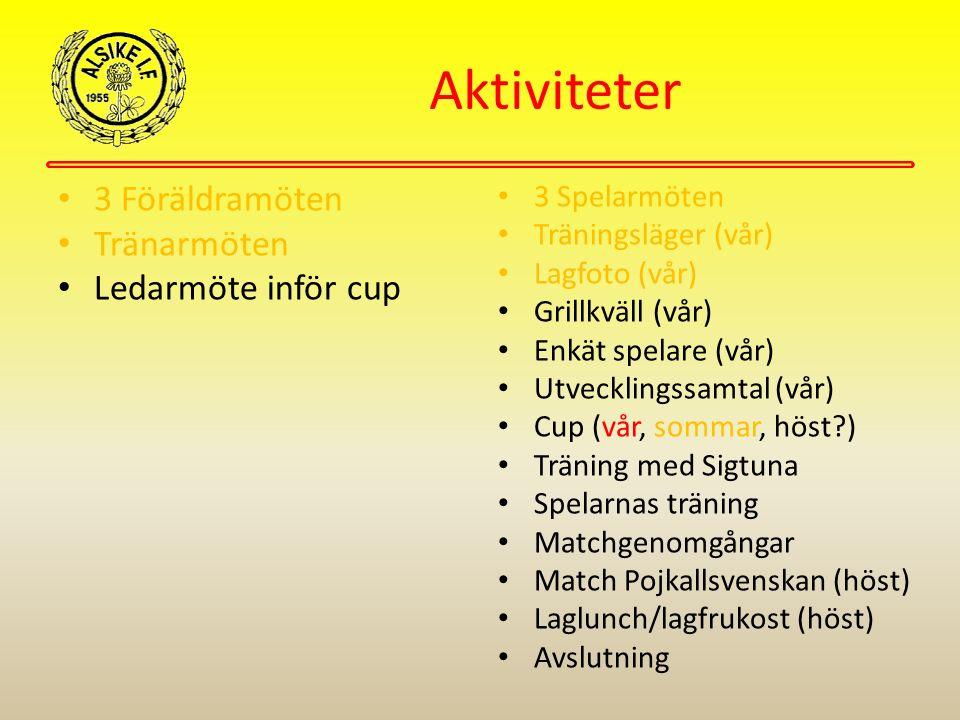 Aktiviteter 3 Föräldramöten Tränarmöten Ledarmöte inför cup 3 Spelarmöten Träningsläger (vår) Lagfoto (vår) Grillkväll (vår) Enkät spelare (vår) Utvecklingssamtal (vår) Cup (vår, sommar, höst ) Träning med Sigtuna Spelarnas träning Matchgenomgångar Match Pojkallsvenskan (höst) Laglunch/lagfrukost (höst) Avslutning