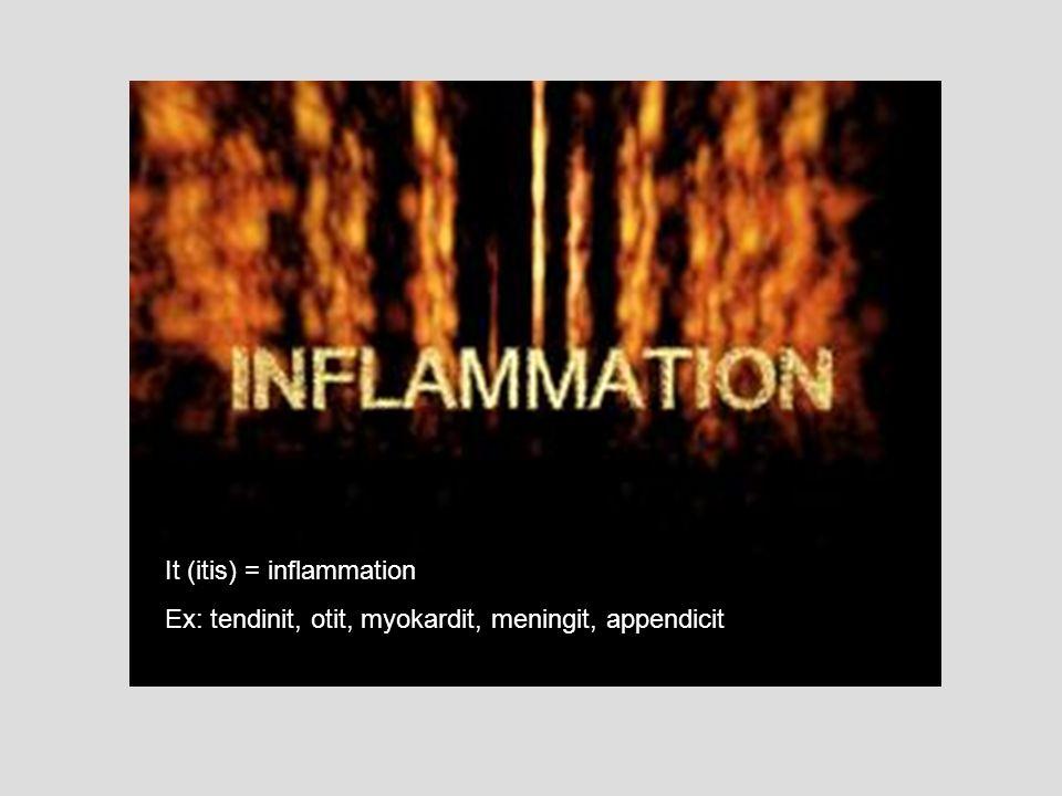 It (itis) = inflammation Ex: tendinit, otit, myokardit, meningit, appendicit