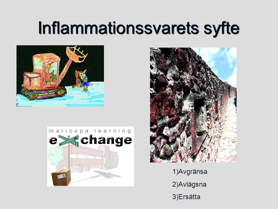 Inflammationssvarets syfte 1)Avgränsa 2)Avlägsna 3)Ersätta
