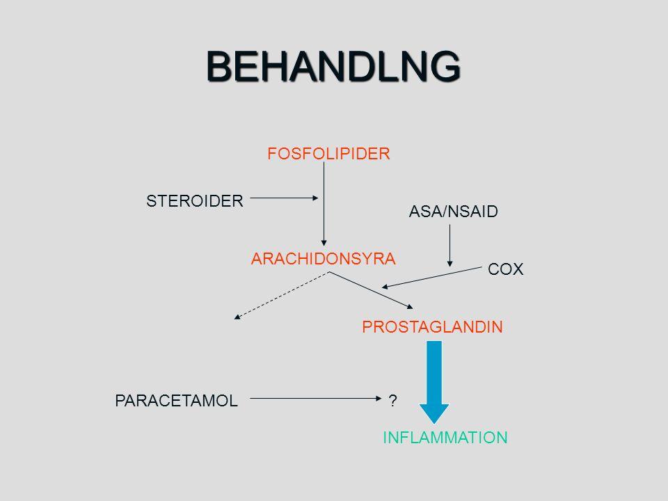 BEHANDLNG FOSFOLIPIDER ARACHIDONSYRA INFLAMMATION PROSTAGLANDIN COX STEROIDER ASA/NSAID PARACETAMOL?