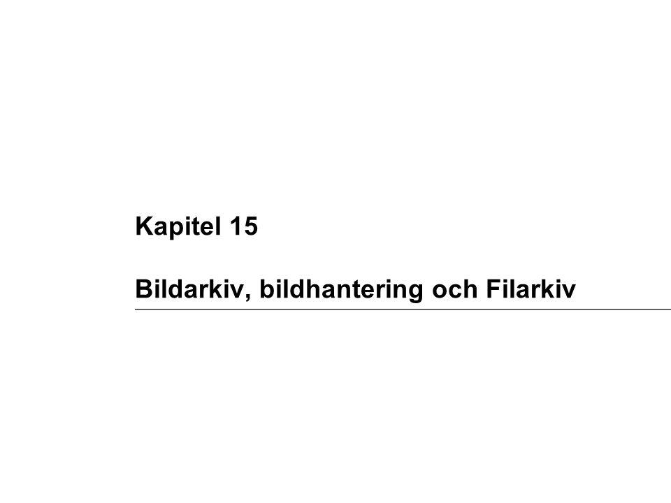 Kapitel 15 Bildarkiv, bildhantering och Filarkiv