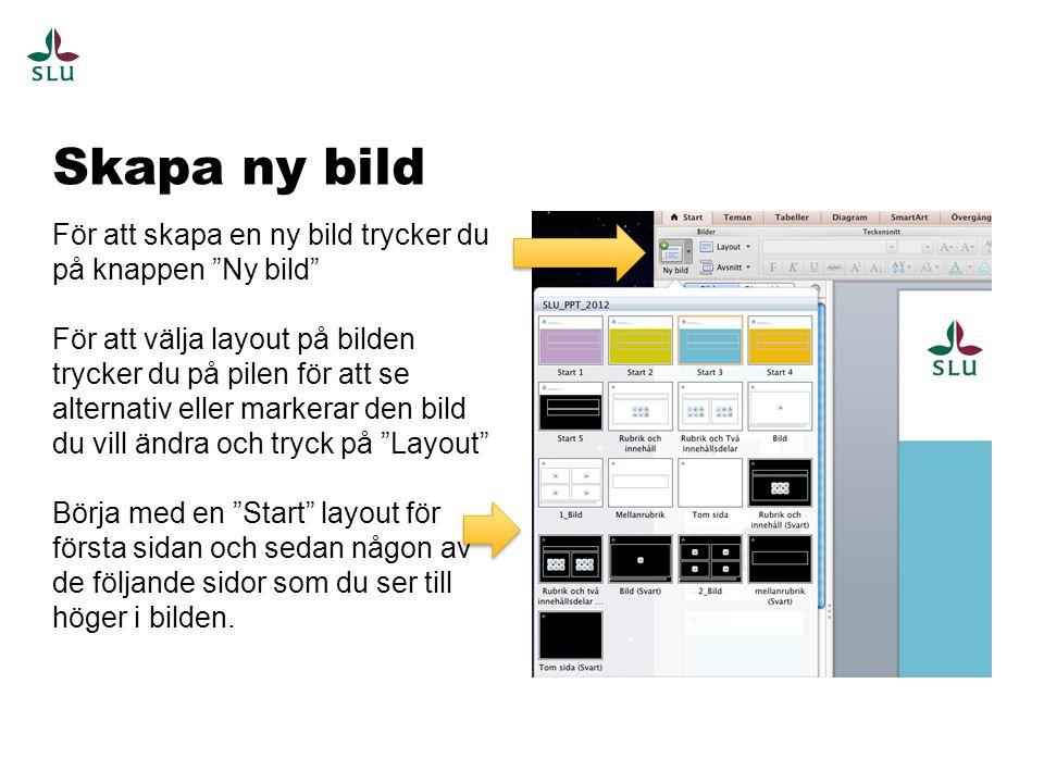 Mellanrubriker Använd mellanrubriker för att bryta av din presentation och skapa variation och kapitel.