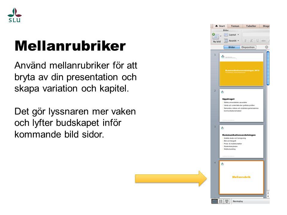 Planera din presentation Planera innehållet i din presentation noggrant och ha inte med för mycket på varje bild.