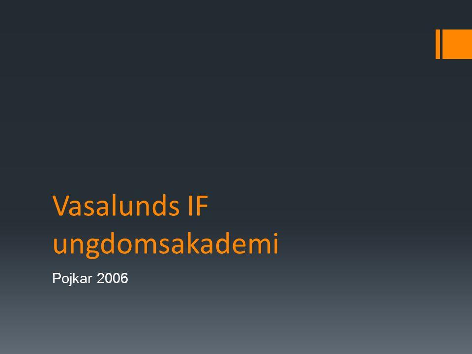 Vasalunds IF ungdomsakademi Pojkar 2006