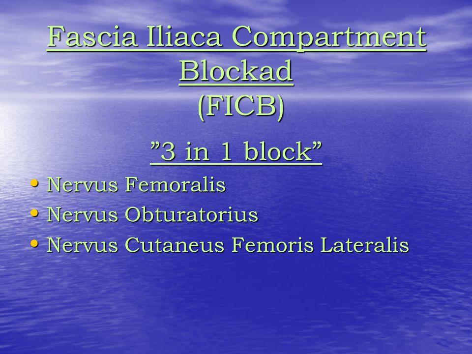 Fascia Iliaca Compartment Blockad (FICB) 3 in 1 block Nervus Femoralis Nervus Femoralis Nervus Obturatorius Nervus Obturatorius Nervus Cutaneus Femoris Lateralis Nervus Cutaneus Femoris Lateralis