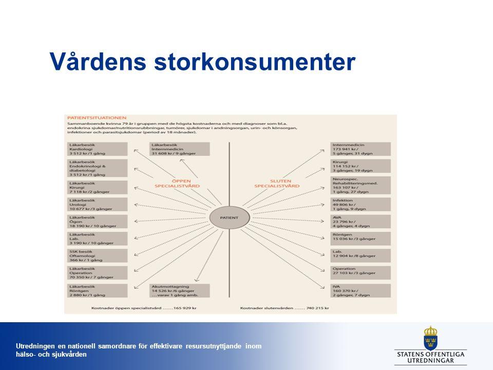 Utredningen en nationell samordnare för effektivare resursutnyttjande inom hälso- och sjukvården Vårdens storkonsumenter