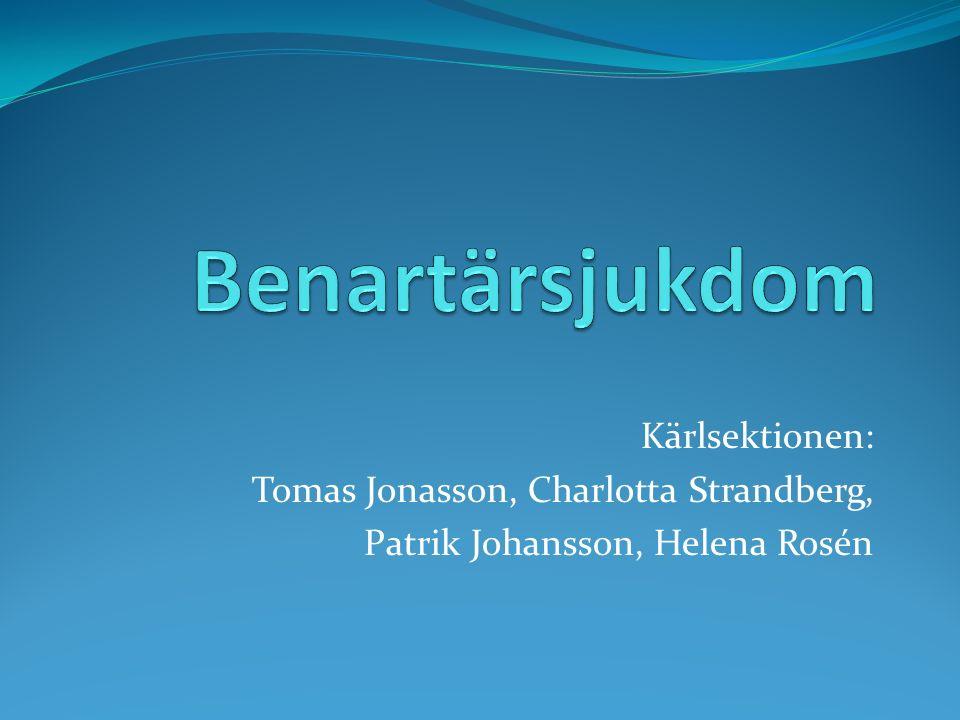 Kärlsektionen: Tomas Jonasson, Charlotta Strandberg, Patrik Johansson, Helena Rosén