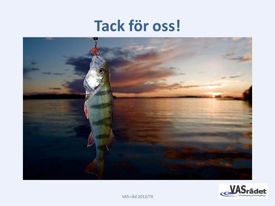 Rapporten kommer att finnas tillgänglig på VAS-rådets hemsida www.vasradet.se Tack för oss.