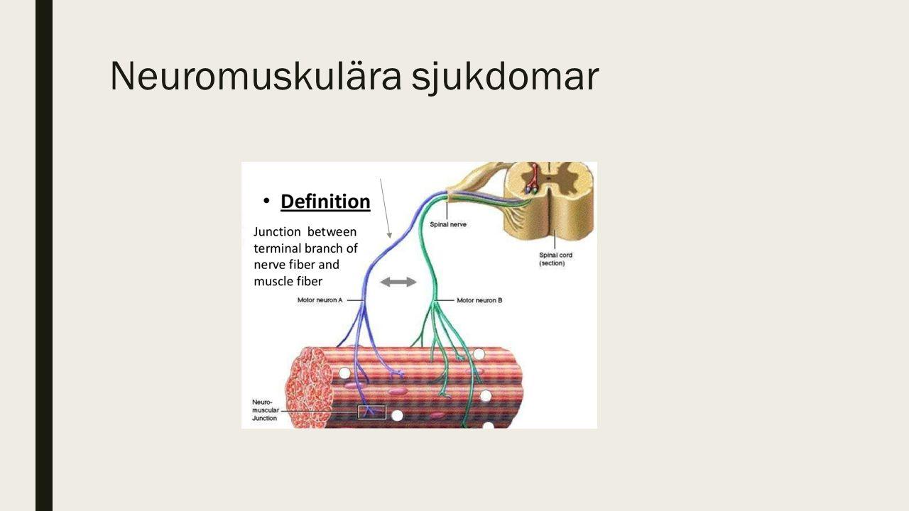 Neuromuskulära sjukdomar