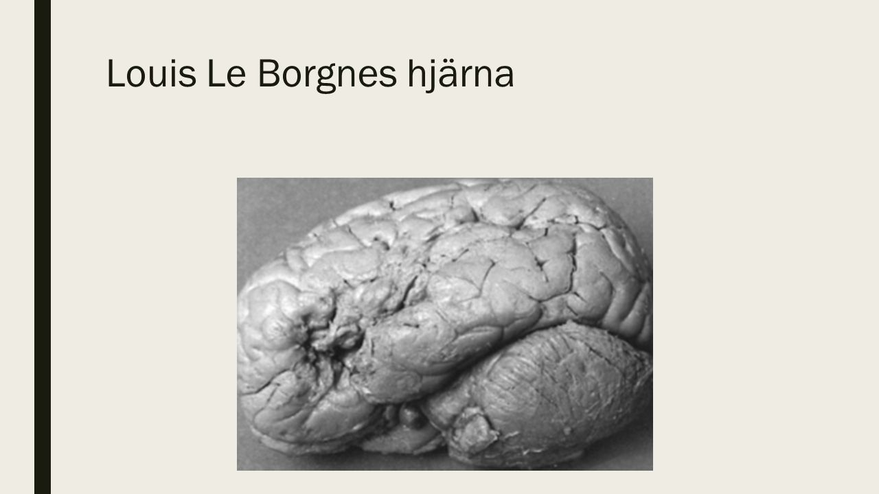 Louis Le Borgnes hjärna