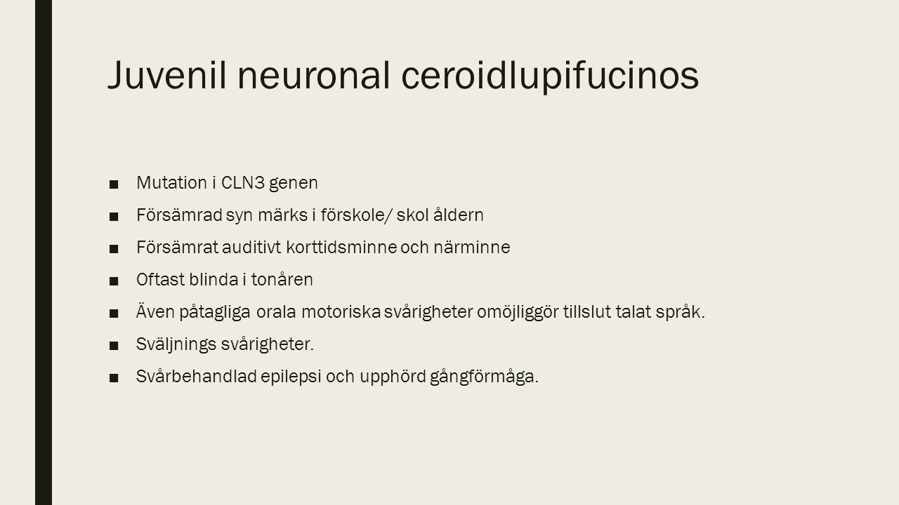Juvenil neuronal ceroidlupifucinos ■Mutation i CLN3 genen ■Försämrad syn märks i förskole/ skol åldern ■Försämrat auditivt korttidsminne och närminne ■Oftast blinda i tonåren ■Även påtagliga orala motoriska svårigheter omöjliggör tillslut talat språk.