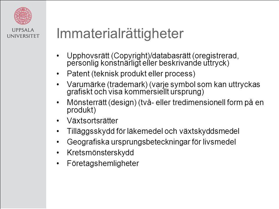Immaterialrättigheter Upphovsrätt (Copyright)/databasrätt (oregistrerad, personlig konstnärligt eller beskrivande uttryck) Patent (teknisk produkt eller process) Varumärke (trademark) (varje symbol som kan uttryckas grafiskt och visa kommersiellt ursprung) Mönsterrätt (design) (två- eller tredimensionell form på en produkt) Växtsortsrätter Tilläggsskydd för läkemedel och växtskyddsmedel Geografiska ursprungsbeteckningar för livsmedel Kretsmönsterskydd Företagshemligheter