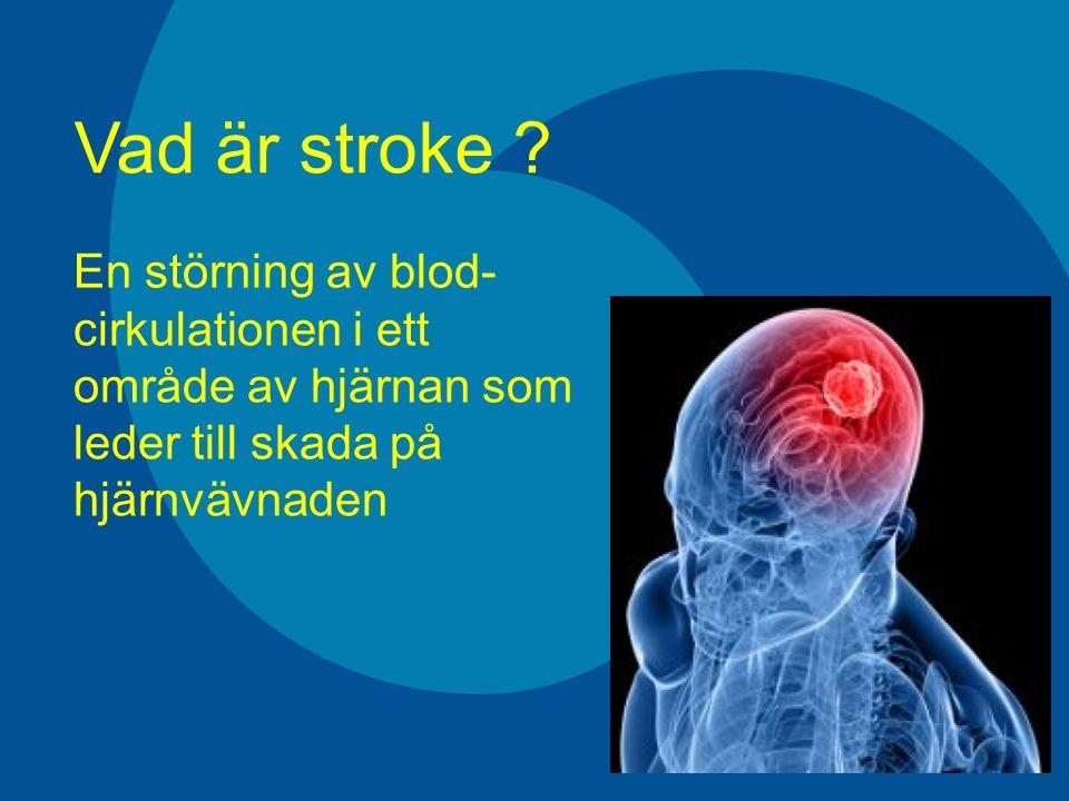 Huvudtyper av stroke Blödning i hjärnan10 % Blödning i hjärnans hinnor 5 % Cerebral infarkt (propp) 85 % Innefattar inte TIA (varningspropp) Ger samma plötsliga symtom som stroke Symtomen försvinner spontan (proppen löses upp av sig själv) Varar vanligen mindre 15 min (max 24 timmar)