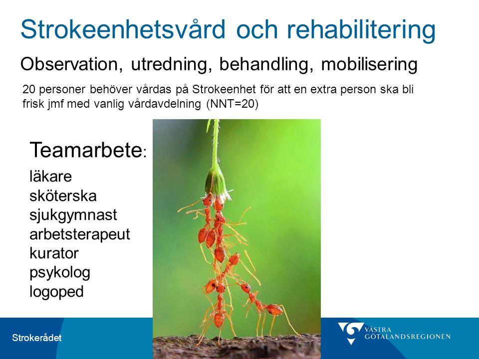 Strokerådet Strokeenhetsvård och rehabilitering Observation, utredning, behandling, mobilisering Teamarbete : läkare sköterska sjukgymnast arbetsterap