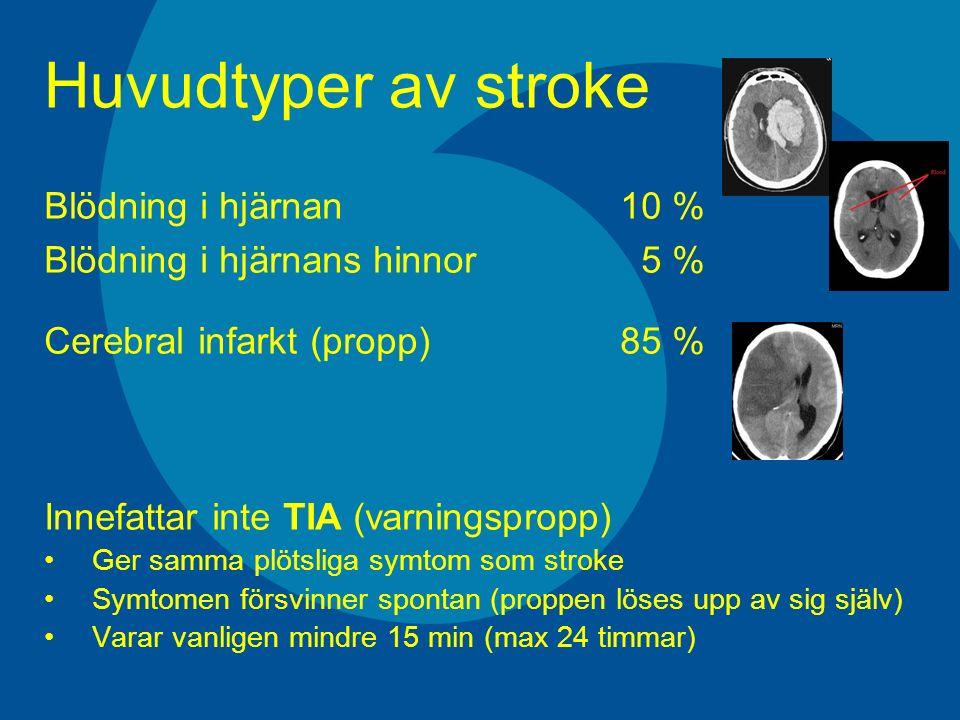 Huvudtyper av stroke Blödning i hjärnan10 % Blödning i hjärnans hinnor 5 % Cerebral infarkt (propp) 85 % Innefattar inte TIA (varningspropp) Ger samma