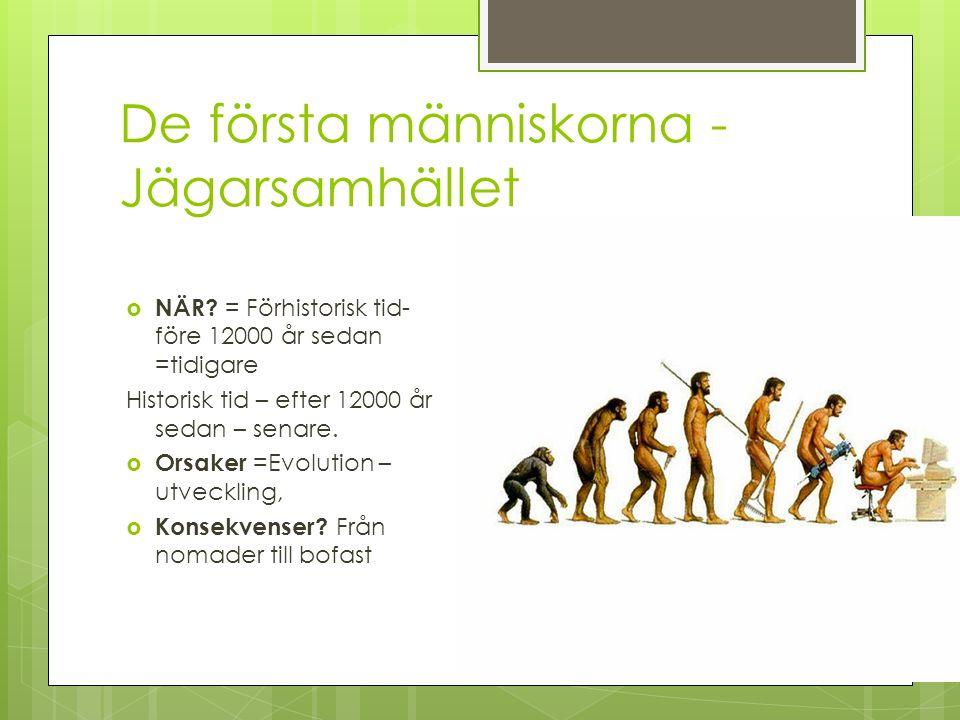 De första människorna - Jägarsamhället  NÄR.
