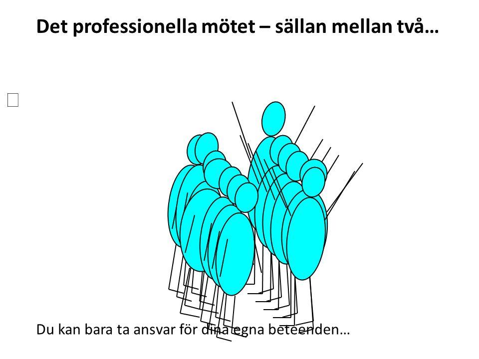 Det professionella mötet – sällan mellan två… Du kan bara ta ansvar för dina egna beteenden…