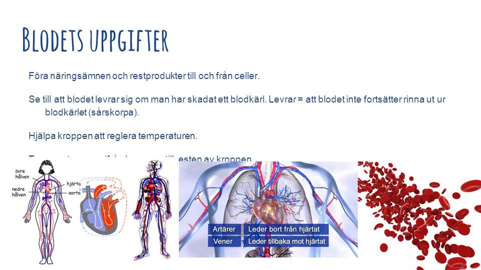 Blodets uppgifter Föra näringsämnen och restprodukter till och från celler.