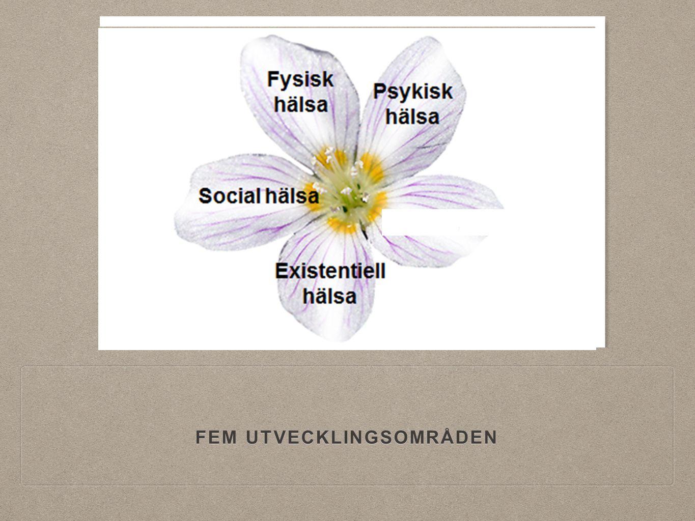 FEM UTVECKLINGSOMRÅDEN,