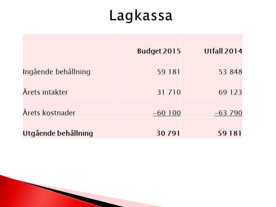 Budget 2015Utfall 2014 Ingående behållning59 18153 848 Årets intäkter31 71069 123 Årets kostnader-60 100-63 790 Utgående behållning30 79159 181