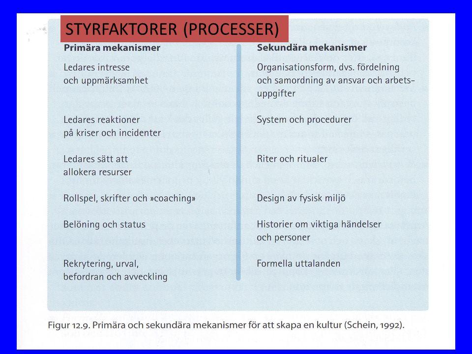 STYRFAKTORER (PROCESSER)