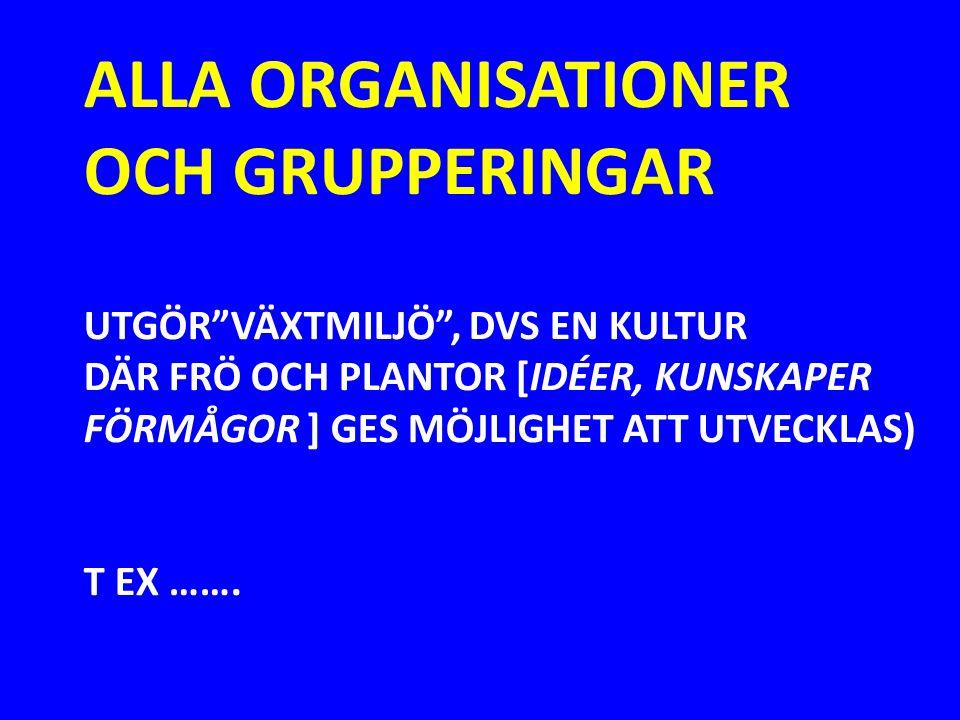 GRUNDSKOLAN I Y-STAD… FÖRSKOLAN FLÖJTEN I LUND… IKEA JOHANSSONS TRÄVARUFABRIK BANK- OCH FINANSVÄRLDENS KULTUR (NORDEA, SWEDBANK …) FÖRORTSKULTURER (NO-GO- ZONES) NATIONELLA KULTURER