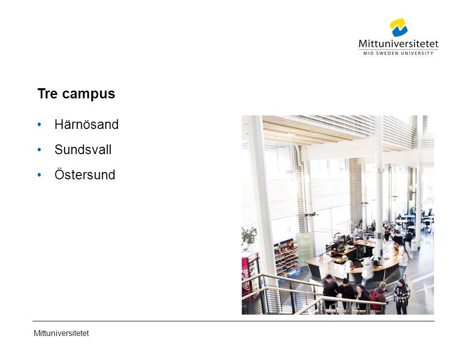 Mittuniversitetet Tre campus Härnösand Sundsvall Östersund